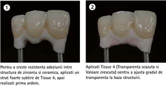 tissue1.jpg