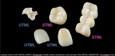 discuri-zirconia-utml-stml.jpg