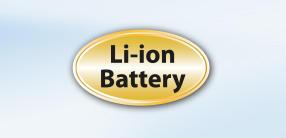 dl-28-lion.jpg